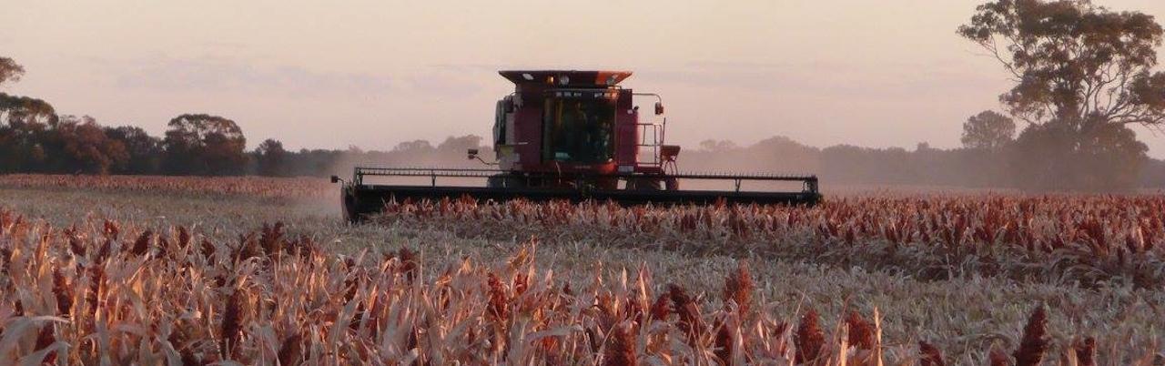 Tullamore Farming